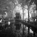 jardin-du-luxembourg_4994861476_l