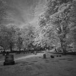 mount-pleasant-cemetery_5095896040_l