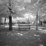 park-bench_4994254931_l